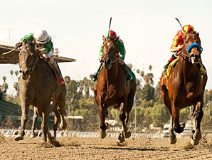 Wild Dude, outside, wins the Palos Verdes Stakes.