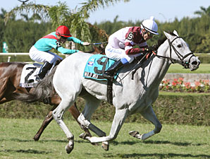 Wild Mia wins the 2009 John Franks Juvenile Fillies Turf.