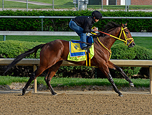 Wildcat Red works at Churchill Downs April 27.