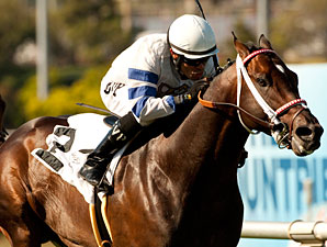 Wilkinson wins the 2012 American Handicap.