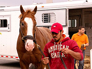 Will Take Charge arrives at Pimlico, May 14, 2013.