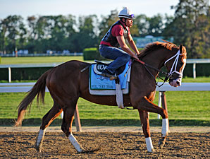 Will Take Charge - Belmont Park, June 5, 2013.