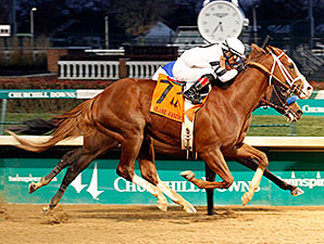 Will Take Charge wins the 2013 Clark Handicap.