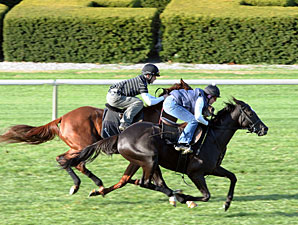 Willcox Inn (outide) and Rough sailing work at Keeneland on October 30, 2010.