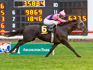 Willcox Inn wins the 2011 Arlington Classic.
