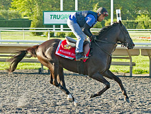 Willcox Inn - Arlington Park, August 17, 2012.