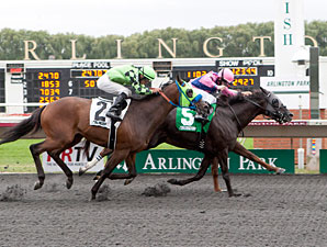 Willcox Inn wins the 2013 Washington Park Handicap.