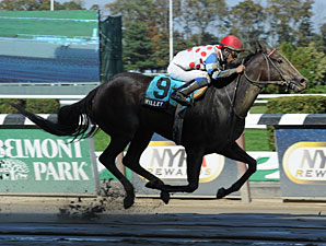 Willet wins the 2012 Iroquois Stakes.