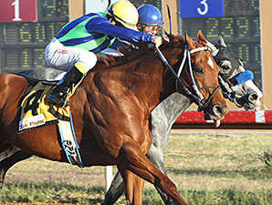 Wine Police wins the 2014 Lea County Sprint Stakes.