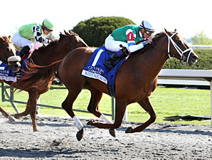 Winning Cause wins the 2013 Coolmore Lexington.