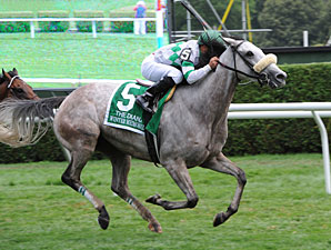 Winter Memories wins the 2012 Diana.