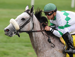 Winter Memories wins the 2011 Garden City.