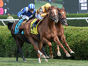 Wise Dan wins the Bernard Baruch.