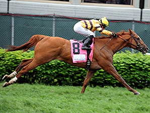 Wise Dan wins the Woodford Reserve.