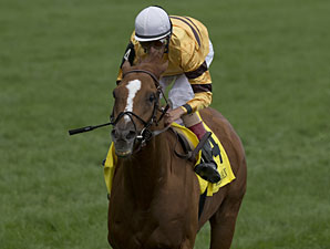 Wise Dan running in the Woodbine Mile.