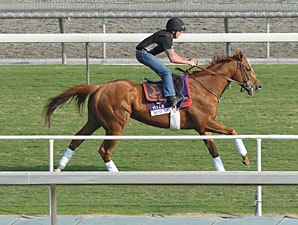 Wise Dan - Breeders' Cup 2012