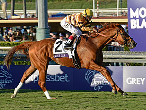 Wise Dan wins the 2012 Breeders' Cup Mile.