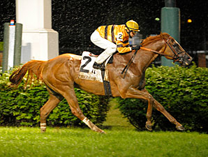 Wise Dan wins the 2013 Firecracker Handicap.