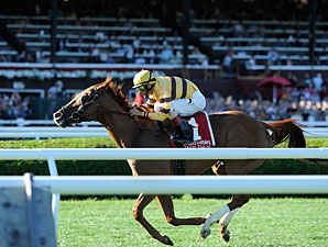 Wise Dan wins the 2013 Fourstardave.
