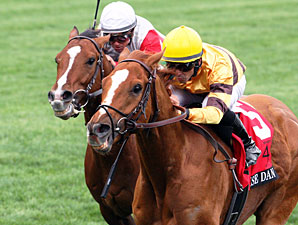 Wise Dan wins the 2013 Maker's 46 Mile.