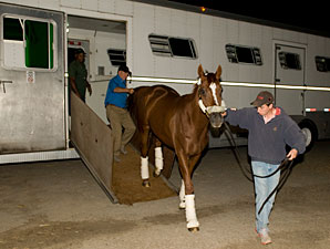Wise Dan arrives at Woodbine on September 14, 2012.
