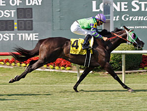 Wise River wins the 2010 Dallas Turf Cup.