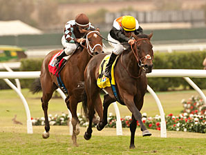 Wishing Gate wins the 2013 San Clemente