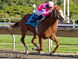 Wonderlandbynight wins the 2010 Arlington-Washington Lassie.