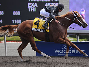 Wonderlandbynight wins the 2010 Ontario Debutante Stakes.
