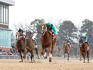 Work All Week wins the 2014 Hot Springs Stakes.