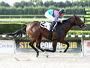 Yes I'm Lucky wins the 2013 Frank Gomez Memorial Stakes.