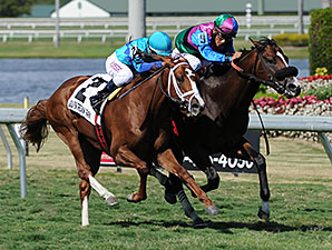 Yes I'm Lucky wins the 2014 Mr. Light Stakes.