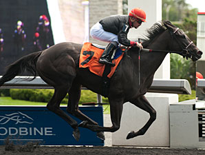 Youcan'tcatchme wins the Etobicoke Stakes.