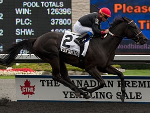 Youcan'tcatchme wins the 2013 Seaway Stakes.