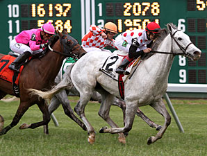 Za Approval wins the 2013 Red Bank Stakes.