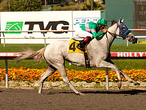 Zazu wins the 2011 Hollywood Oaks.
