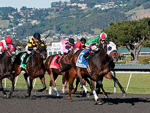Zeewat wins the 2012 California Derby.