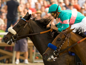 Zenyatta-Rachel Alexandra Match Race Proposed