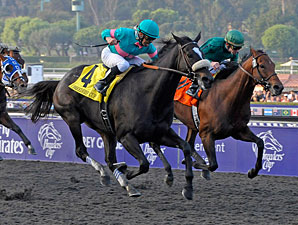 It's All Zenyatta in the BC Classic