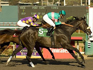 Zenyatta wins the 2010 Lady's Secret.