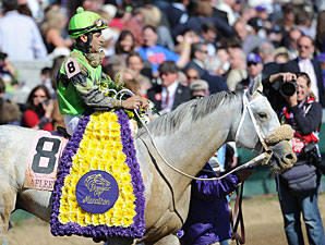 Afleet Again in the 2011 Breeders' Cup Marathon.