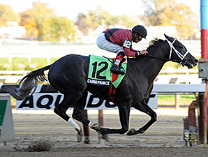 Cairo Prince in the Nashua Stakes.