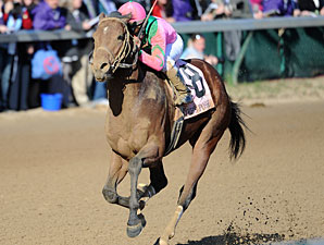 Caleb's Posse wins the Breeders' Cup Dirt Mile.
