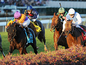 Court Vision wins the Breeders' Cup Mile.