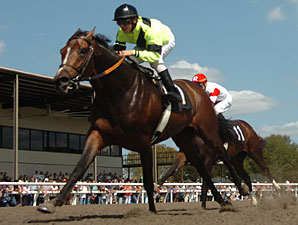 Crafty Unicorn in the OBS Championship Stakes.