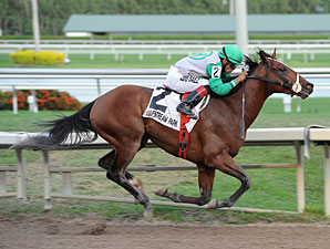 Csaba wins the Harlan's Holiday Stakes.