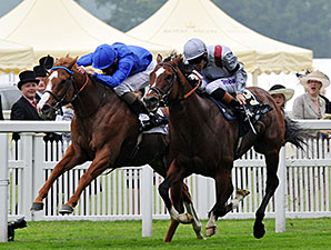 Dawn Approach wins the St James Palace Stakes.