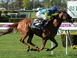 Dayatthespa wins the You Go West Girl Stakes at Belmont Park.