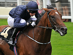 Declaration of War defeats champion Animal Kingdom in the Queen Anne Stakes at Ascot.