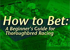 How to Bet: A Beginner's Guide